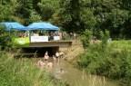 Heb een prachtig we gehad Uitstap Mondo-Verde // Kruimels in 't Park // Bigjump