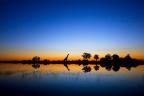 20 prachtige natuurfoto's die je spraakloos achterlaten