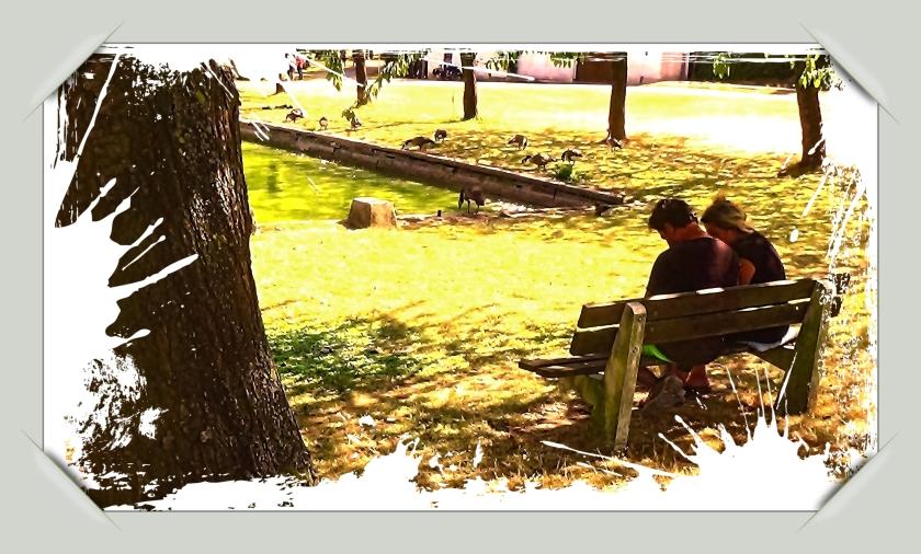 #Fotografie-Website, #Theo-Herbots,#Tienen