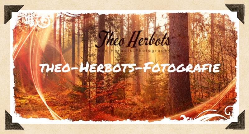 #Theo-Herbots-Fotografie