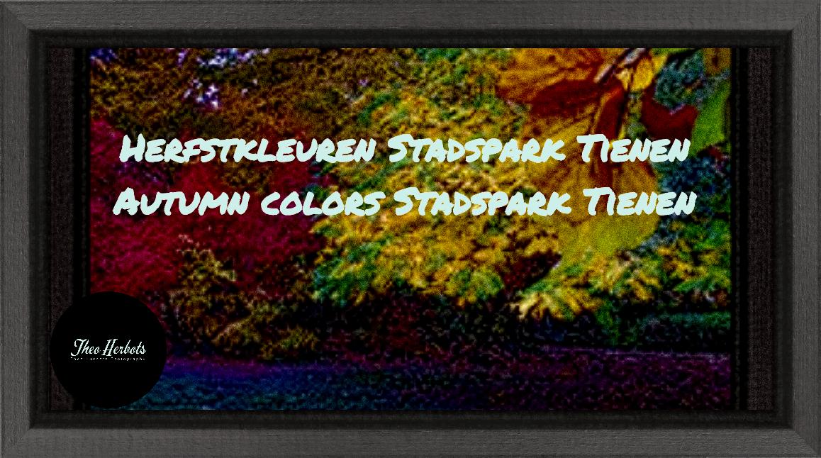 Herfstkleuren Stadspark Tienen | Autumn colors Stadspark Tienen