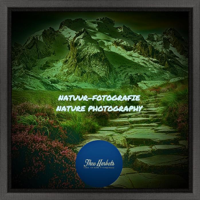 Hier brengt Theo-Herbots-Fotografie alles wat te maken heeft met #Natuurfotografie en #Landschapsfotografie. Fotowedstrijden, Cursussen, video's en nog veel meer. Vriendelijke Groet Theo-Herbots-Fotografie