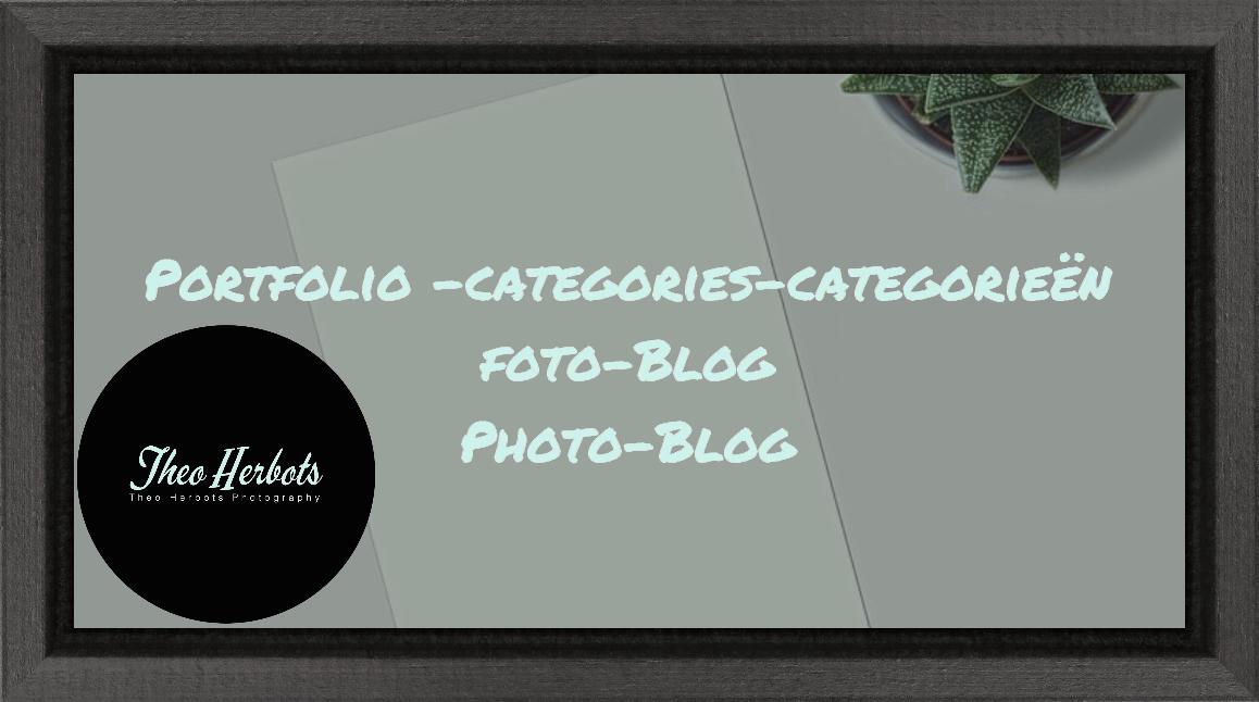 Groeten uit #Tienen categorie-portfolio