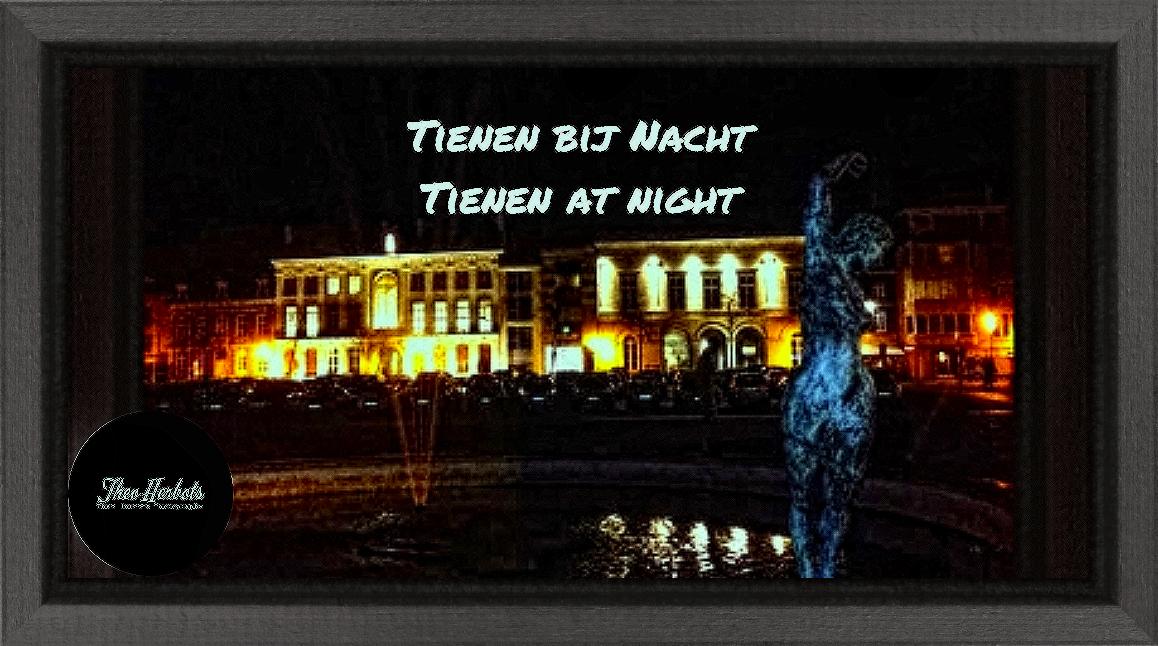Tienen bij nacht | Tienen at night